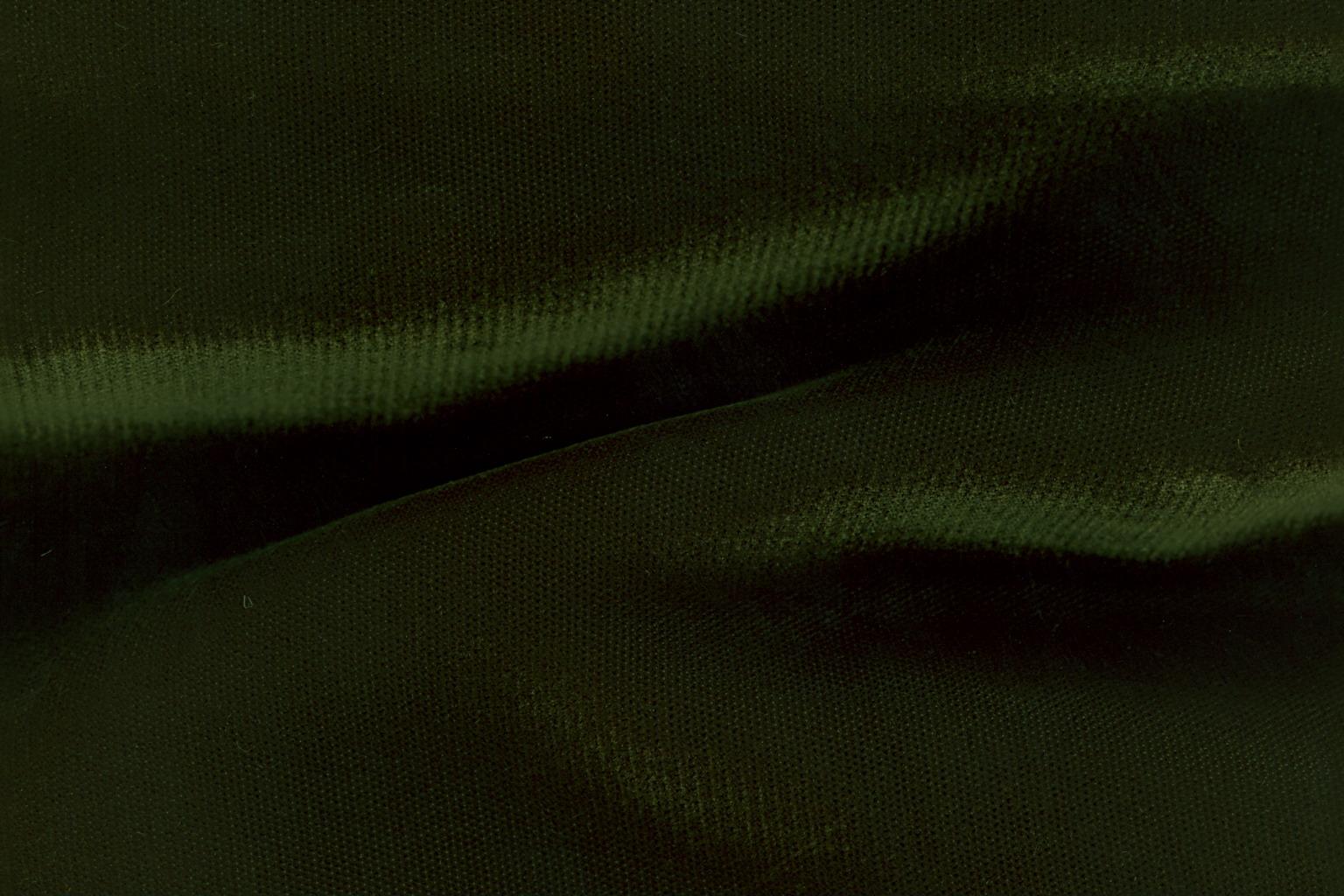 DOGE Muddy Green