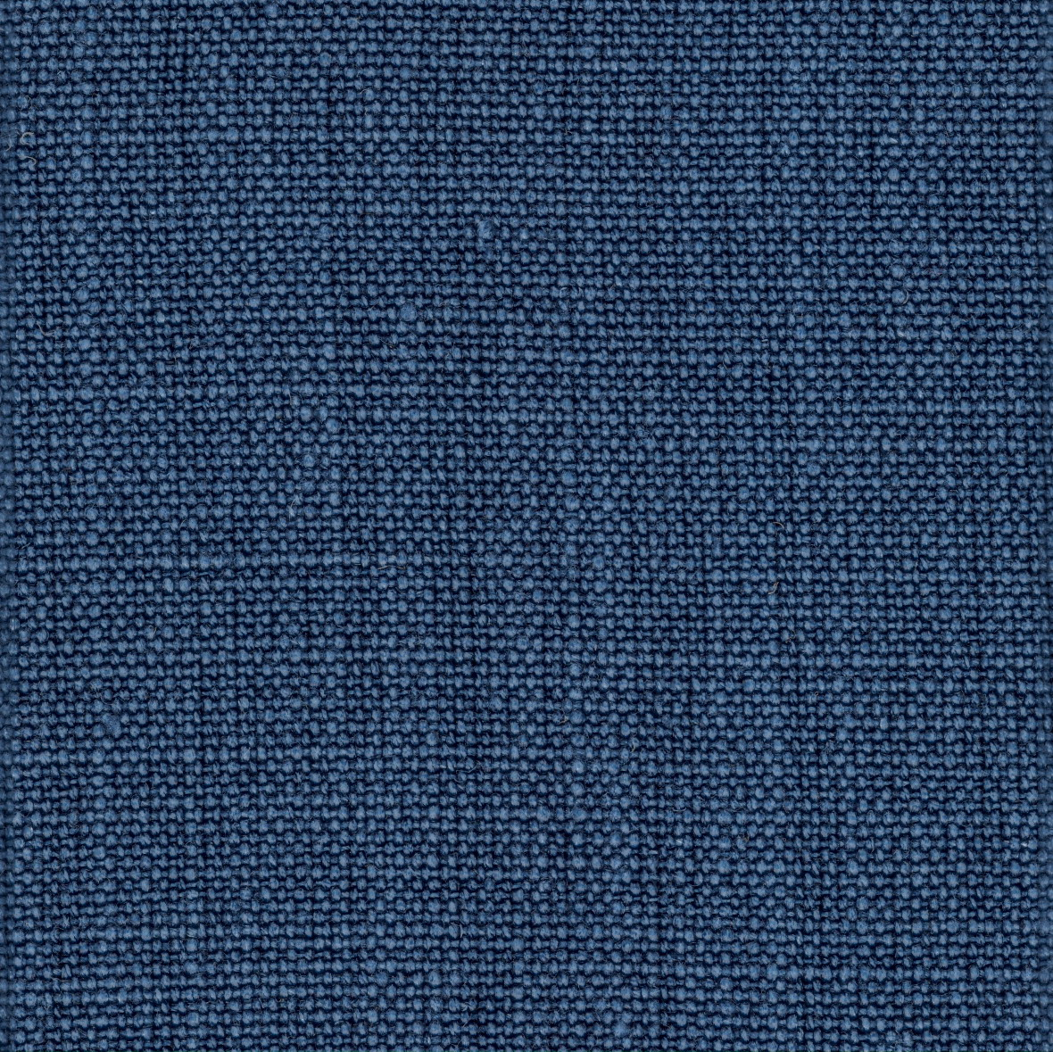 PISA Blue Jeans