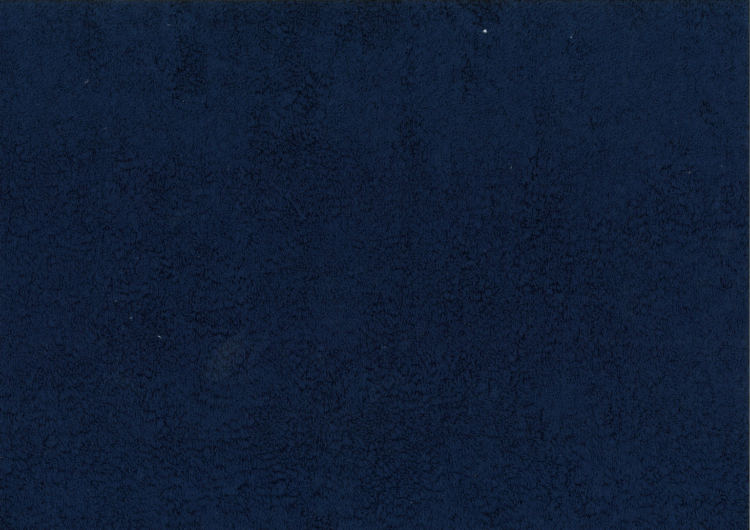 FLORIDA Blue Navy