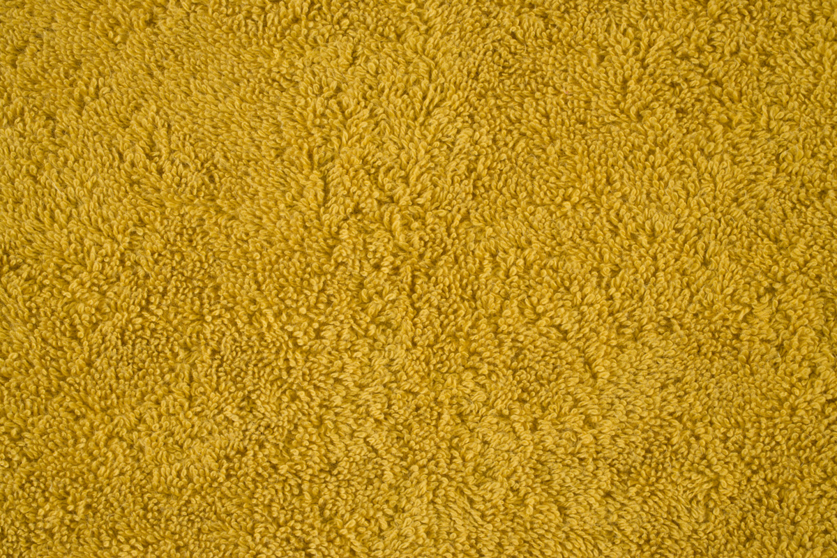 TERRY Mustard