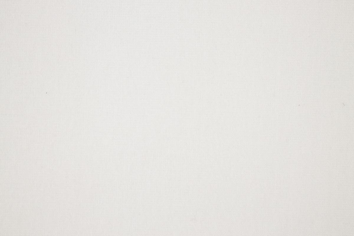 FENICE White