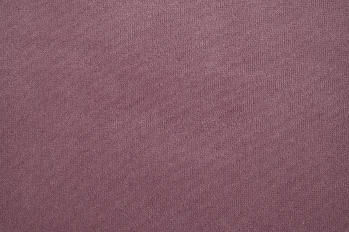 FENICE Lilac